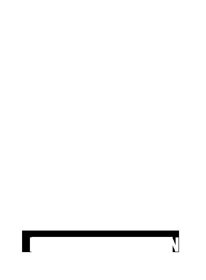 dromoscoop